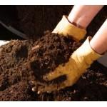 BioDeposit® Elixir - augalų augimo stimuliatorius 12ml