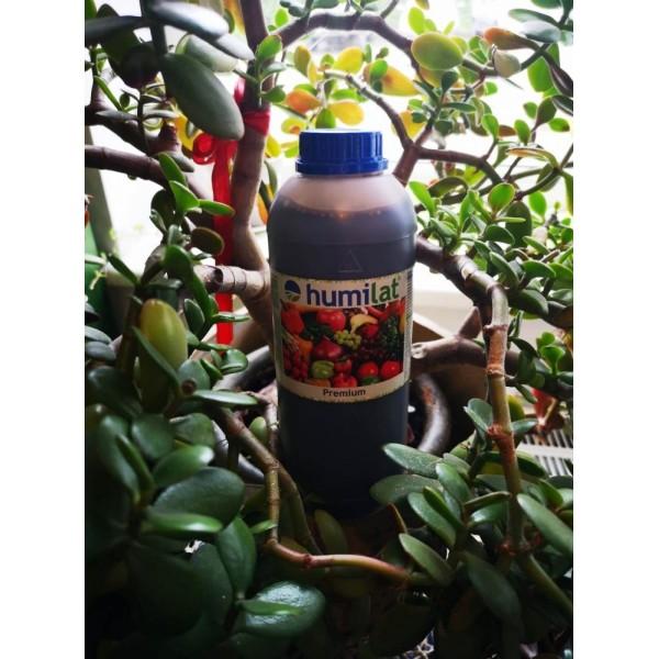 HUMILAT GROW- augalų augimo stimuliatorius